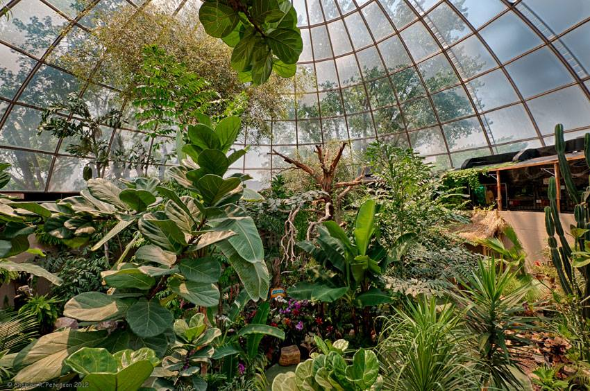 After 80 years, Reptile Gardens keeps growing - Prairie Family ...